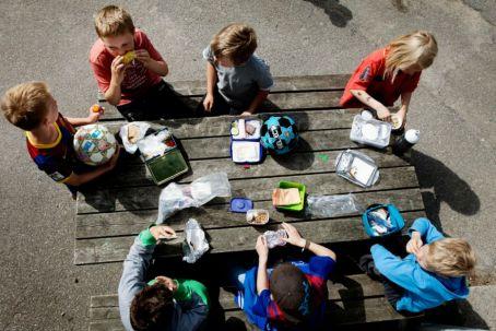 Frikvarter Og Legeplads Roskilde Lille Skole